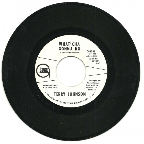 Terry Johnson-500×500